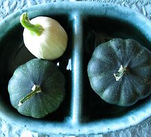 Acorn Butternut Squash Still Life  by Lisa Diamond