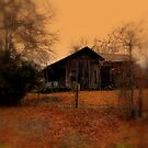 Grandpas House by Dawn di Donato