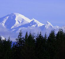 Mt Baker by RichImage