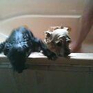 Hey Hey Hey suckam suckatas they Drown us soaking wet!  by zoolou