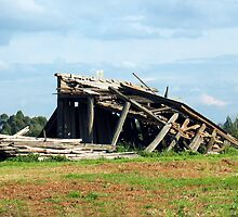The Old Farm Shed....Fallen by Michael John