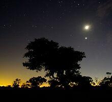 Geelong Glow by AlMiller