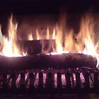Log Fire by Norman Perelson