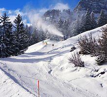 Fresh snow..... by Adri  Padmos
