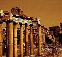 The Forum, Rome, Italy by buttonpresser