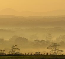 A Flowerdale Morning Mist by Paul Campbell  Photography