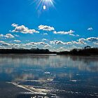Beautiful day in Schaumburg, IL  by Michi Fana