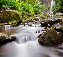 Downstream from Hopetoun Falls by Glen Barton