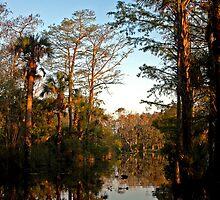 Florida River - - Cards by Maria A. Barnowl
