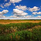 Big Country Sky by Curtiss Simpson