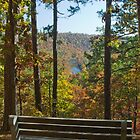 Inspiration Point ~ Ozark County, Missouri by mikeno