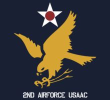 2nd Airforce Emblem by warbirdwear