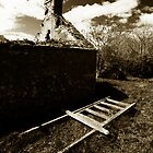Laid out ladder by ragman