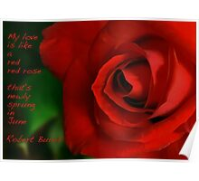 A Red, Red Rose, My Love Is Like Poster