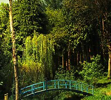 The Blue bridge, Prescoed, Wales by buttonpresser