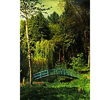 The Blue bridge, Prescoed, Wales Photographic Print