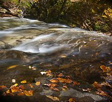 Autumn in Ricketts Glen 3.0 by Murph2010