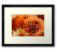 You painted by brush I painted by Camera... Framed Print