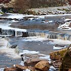 Birkdale Beck, Yorkshire Dales NP by Sue Knowles