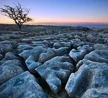 Frost on Twistleton Scar by Angie Latham