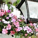 Streetlamp & flowers - watercolour by PhotosByHealy