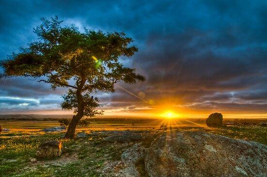 Dog Rocks At Sundown by shadesofcolor