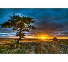 Dog Rocks At Sundown Photographic Print