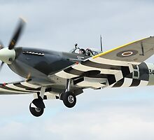 Supermarine Spitfire by Rhymenocerous