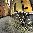 Narrow Gamla Stan street by Guy Carpenter