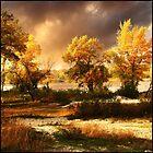 Autumn in the Dnieper River in Ukraine by fenist