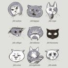 LOLcat Taxonomy by Kari Fry