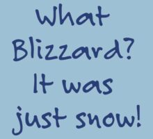 What Blizzard??? by Dawn M. Becker