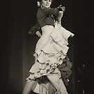 Flamenco nighte 7 by Aleksandar Topalovic