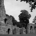 Ruins At Battle Abbey by jason21