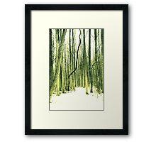 The Path Less Taken Framed Print
