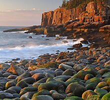 Otter Cliffs At Sunrise  by Stephen Vecchiotti