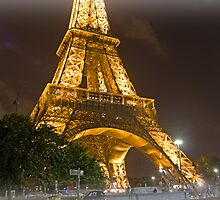 The Eiffel Tower by Craig DeRuyter