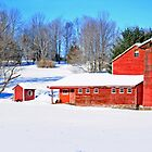 Red barn in Winter by TomSpencer