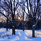 Good Afternoon And Good Night Sun by Ritva Ikonen