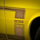 Mustang Boss by Jeanie93