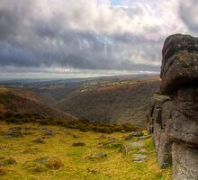 The Dart Valley,Dartmoor by David-J