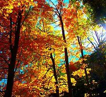 Fiery Leaf scenario by MarianBendeth