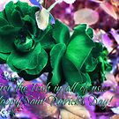 Saint Paddy's Day Card by rocamiadesign
