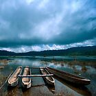 Storm is coming - Tamblingan lake, Bali by Alina Uritskaya