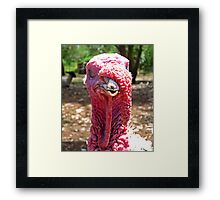 Not So Cool Dude With A Snood Framed Print