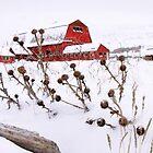Winter Barn 2 by David Kocherhans