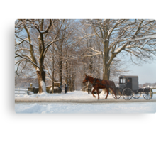 Horse and Buggy - Bird in Hand Metal Print