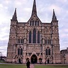 Salisbury Cathedral, Wiltshire by SoulSparrow