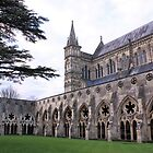Salisbury cathedral cloister by SoulSparrow