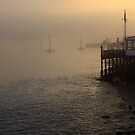 Misty Morning The Boathouse Nelson New Zealand by canonfrek